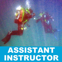 assistant-instructor